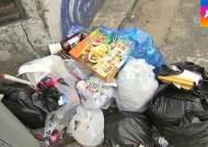 일반 쓰레기봉투에 음식 몰래…불법투기 현장 가보니