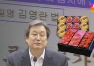 김무성, 잇단 발언 번복…치고 빠지는 정치적 전략?