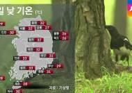 [날씨] 한풀 꺾인 더위…중부·남부지방 소나기