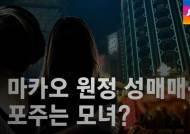 [수사현장] '일본 여자인 척' 마카오 원정 성매매…포주는 모녀?