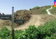 경남 함안 가야시대 '말이산 고분군' 정비업체가 훼손