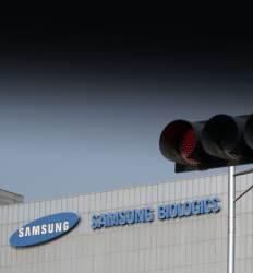 삼성물산은 급락 바이오주는 반등 '삼바' 그후 두 장면