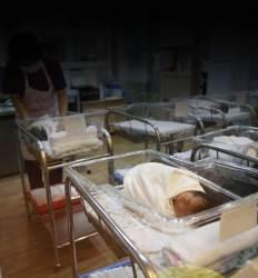 해남 '출산장려금 역설' 179억원 쏟아부었는데 1700명 아이가 떠났다