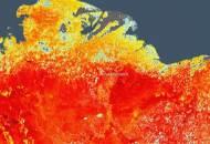 세계서 가장 추운 시베리아가 뜨겁다···韓도 초긴장